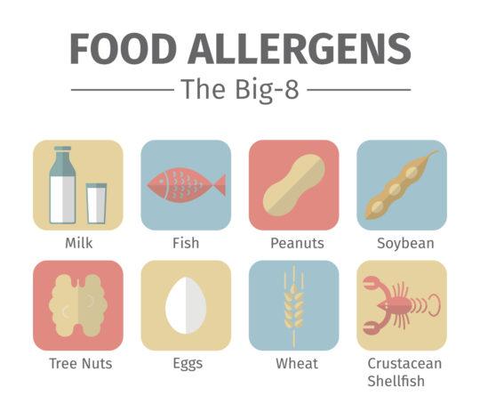 The Big 8 Food Allergens